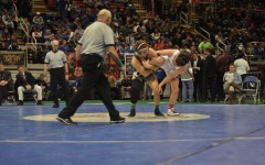 State Wrestling: individual championships 2/21/15